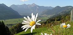 Luft-Messwerte Tirol